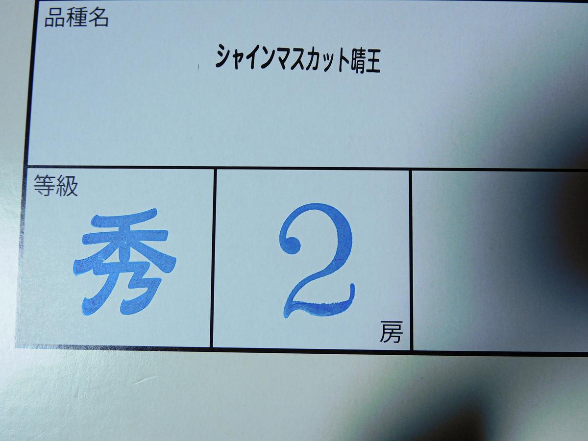 f:id:hashimoto_neko:20210916214553j:plain