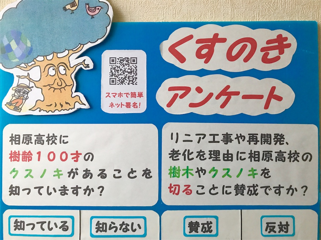 f:id:hashimotoanshin:20190116193348j:image
