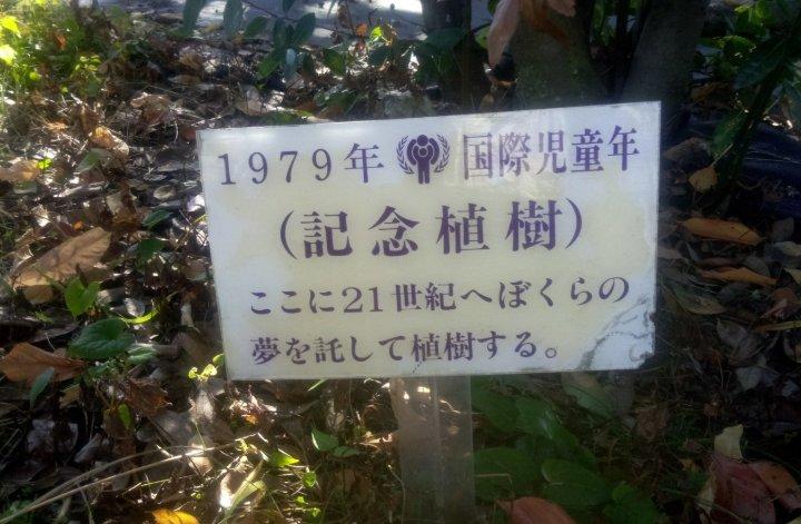 f:id:hashimotoanshin:20210214121258j:plain