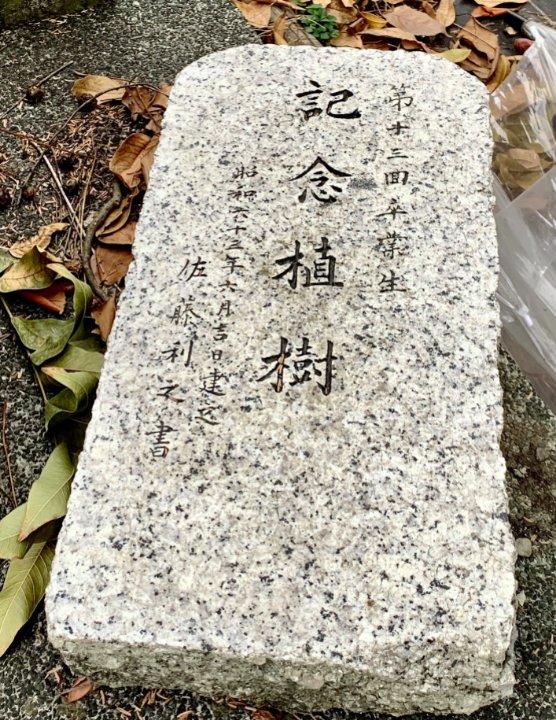 f:id:hashimotoanshin:20210214121344j:plain