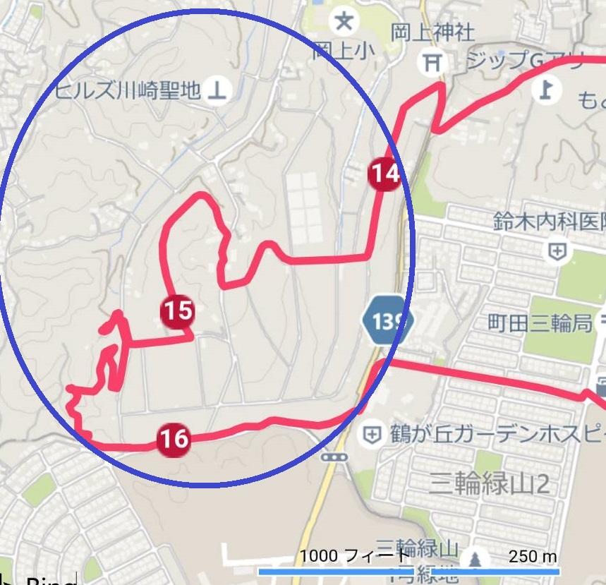 f:id:hashirunodaisuki:20210404191006j:plain