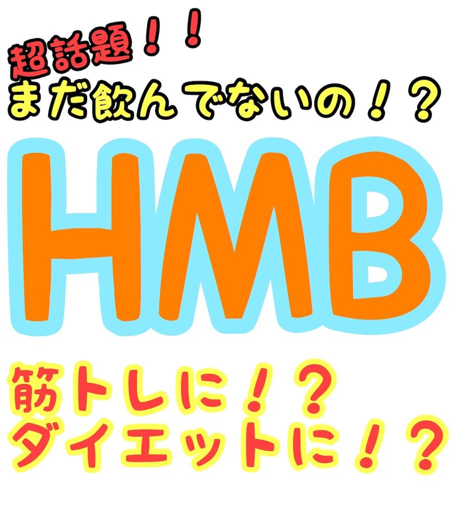 f:id:hashiyuki0322:20180607080502j:image