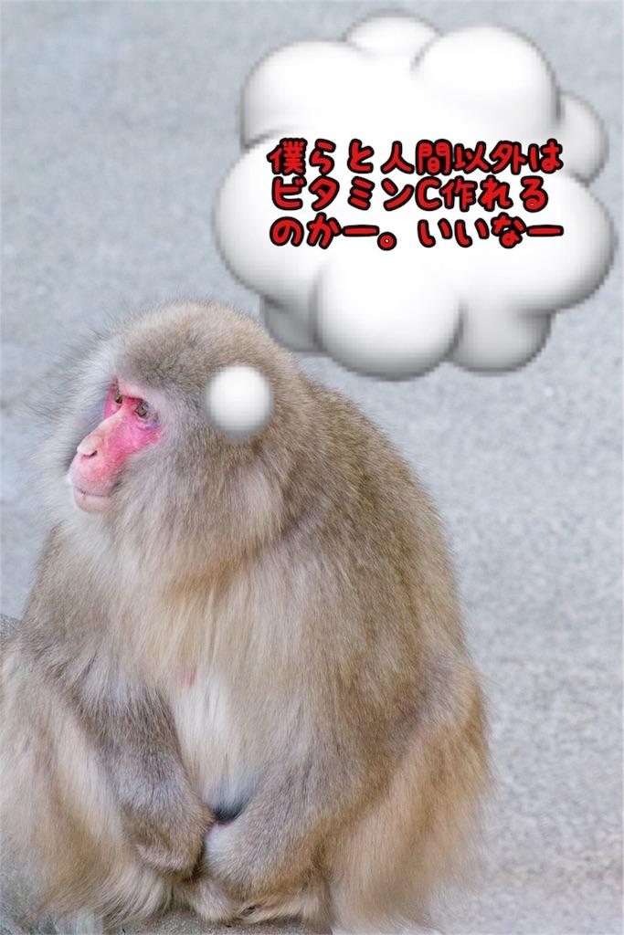 f:id:hashiyuki0322:20180617171438j:image
