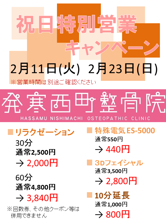 f:id:hassamu-nishimachi:20200205184343p:plain