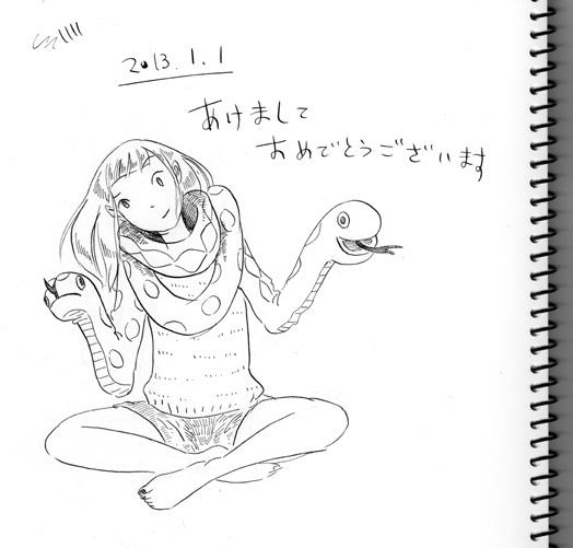 f:id:hasumukai:20130101203340j:image:w400