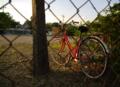 金網と赤い自転車