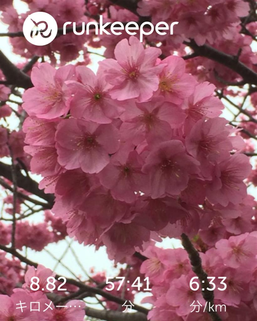 f:id:hatakofuru:20170401073325p:image