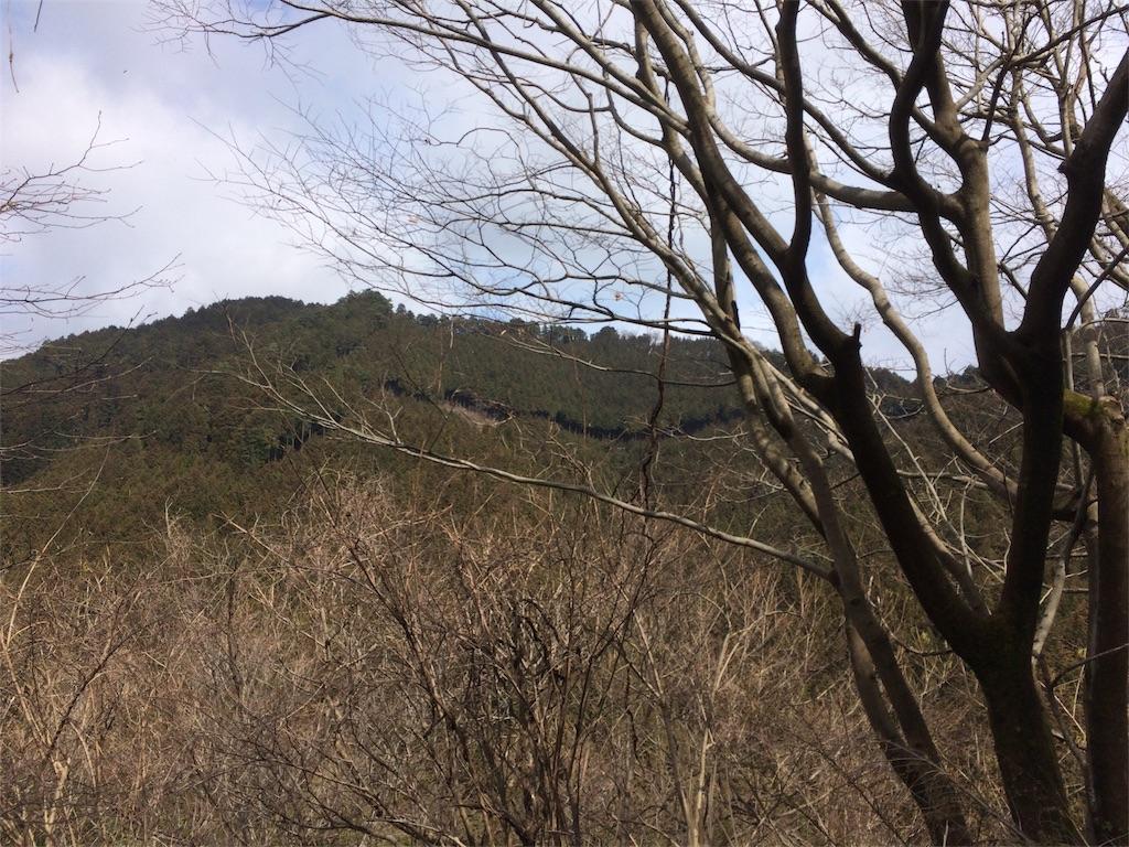 f:id:hatakofuru:20170404200122j:image