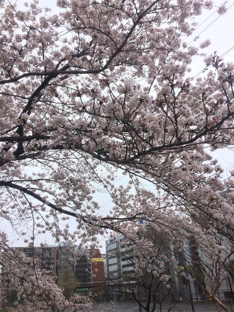 f:id:hatakofuru:20170409202729j:image