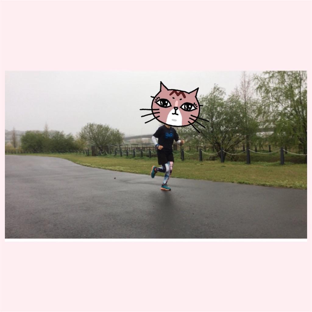 f:id:hatakofuru:20170409203806j:image
