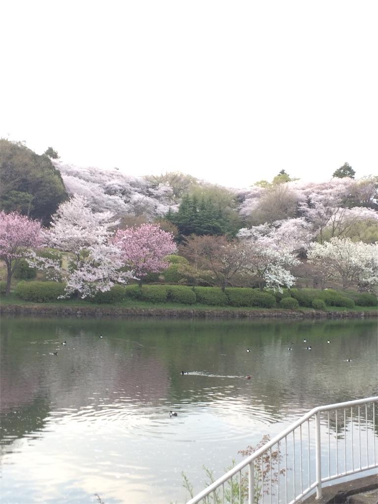 f:id:hatakofuru:20170414095112j:image