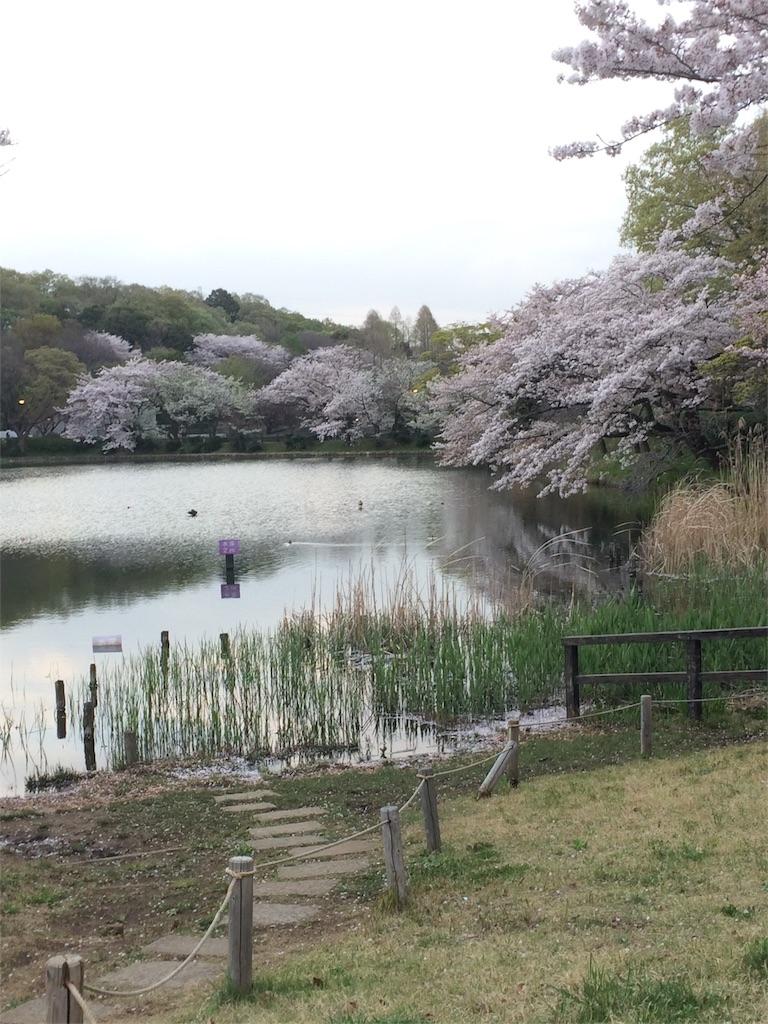 f:id:hatakofuru:20170414095145j:image