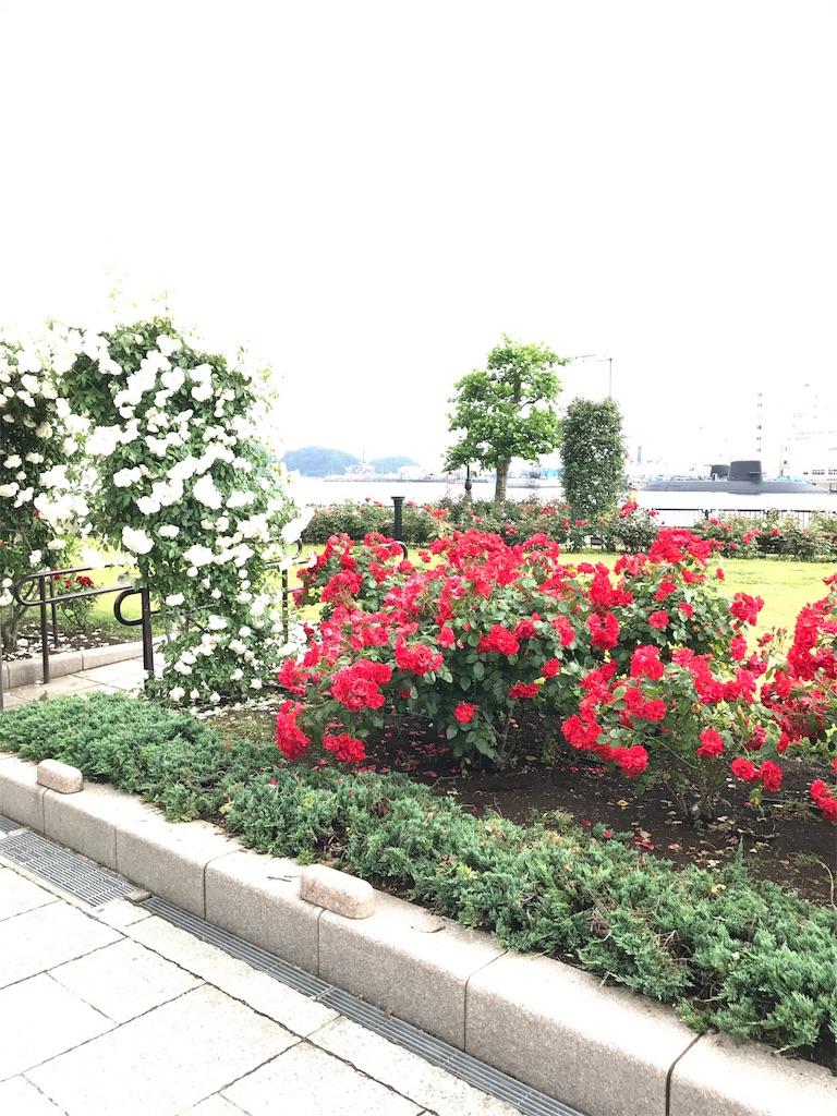 f:id:hatakofuru:20170528182959j:image
