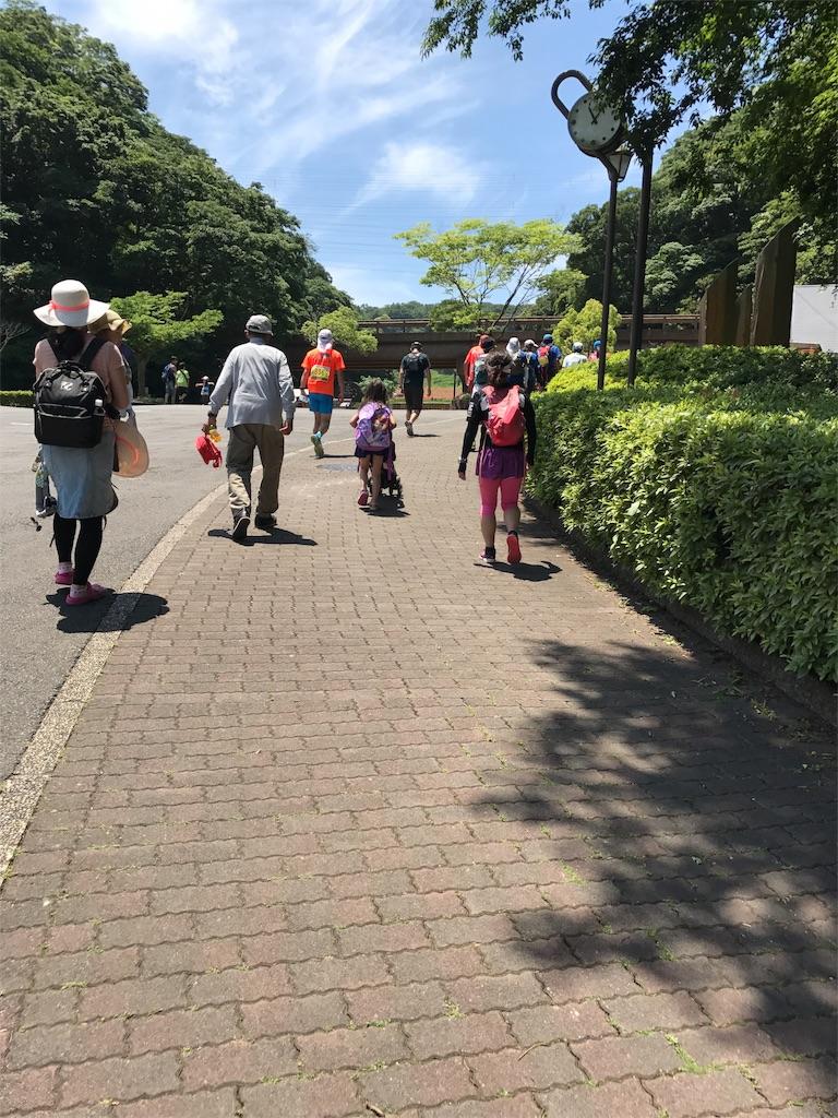 f:id:hatakofuru:20170529081543j:image
