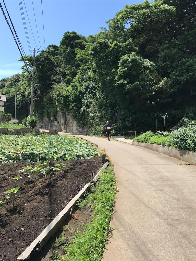 f:id:hatakofuru:20170529203139j:image
