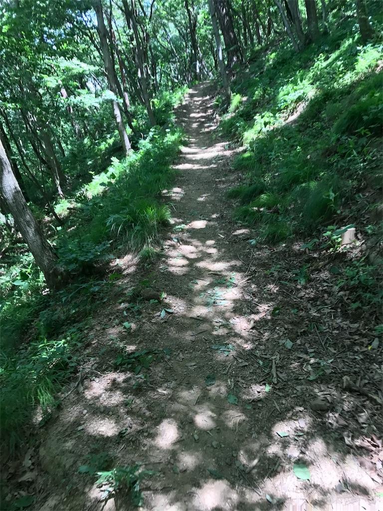 f:id:hatakofuru:20170605232336j:image
