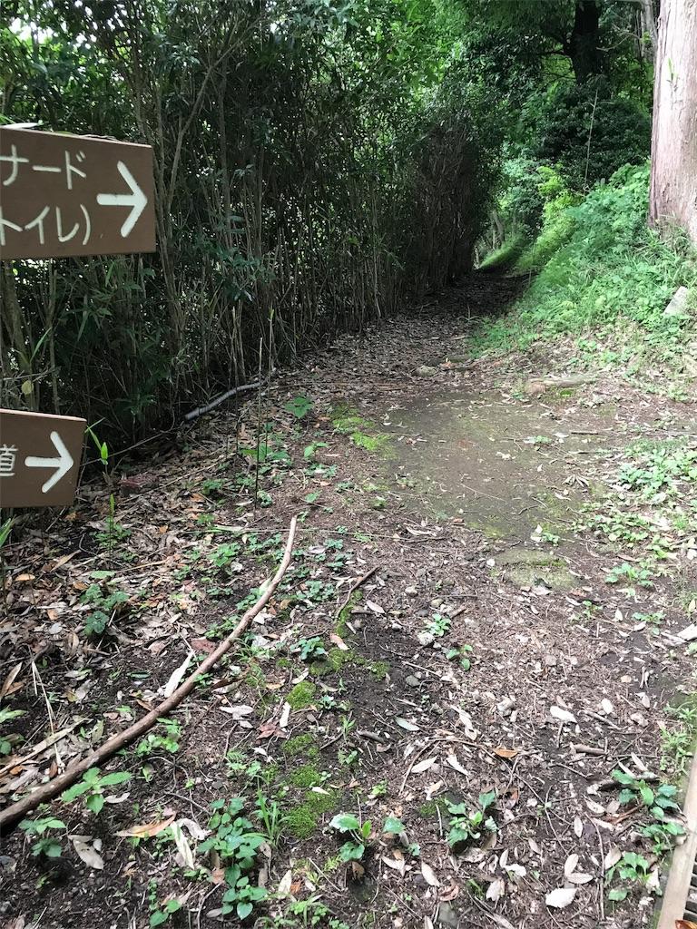 f:id:hatakofuru:20170701161818j:image