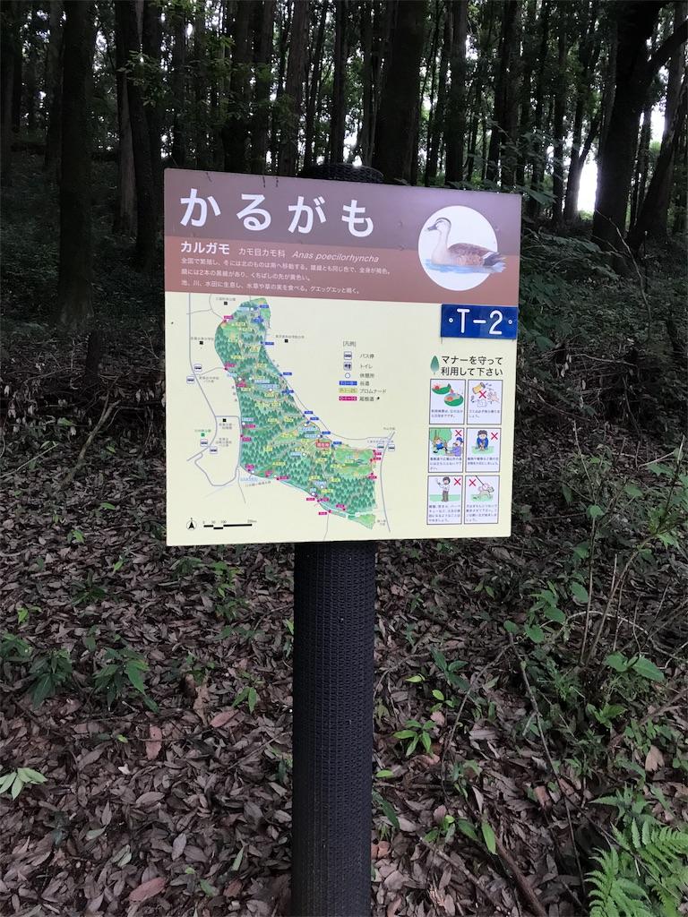 f:id:hatakofuru:20170701170049j:image