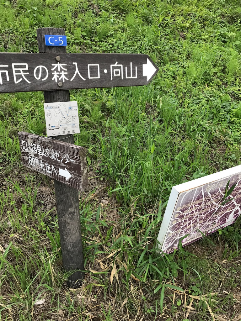 f:id:hatakofuru:20170701231544j:image