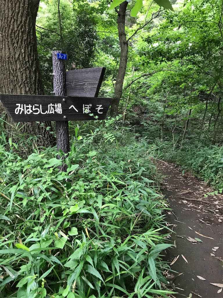 f:id:hatakofuru:20170702063625j:image