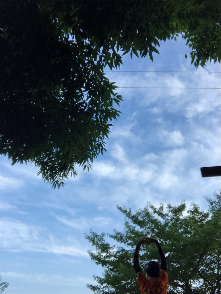 f:id:hatakofuru:20170722225637j:image