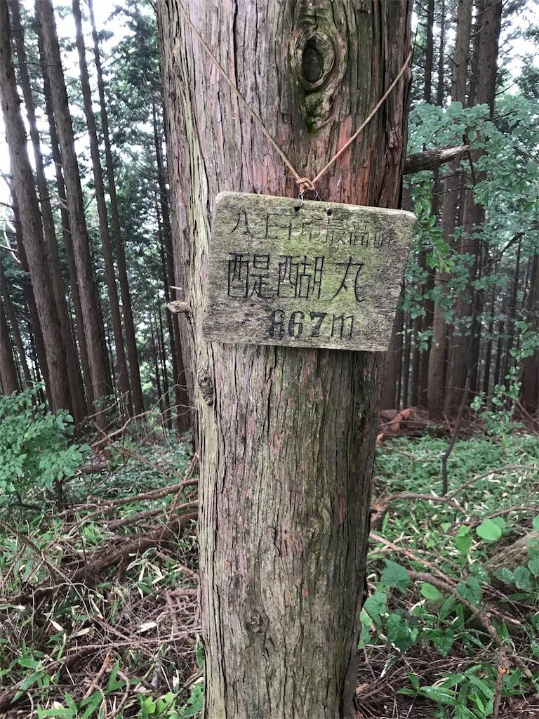 f:id:hatakofuru:20170727055445j:image