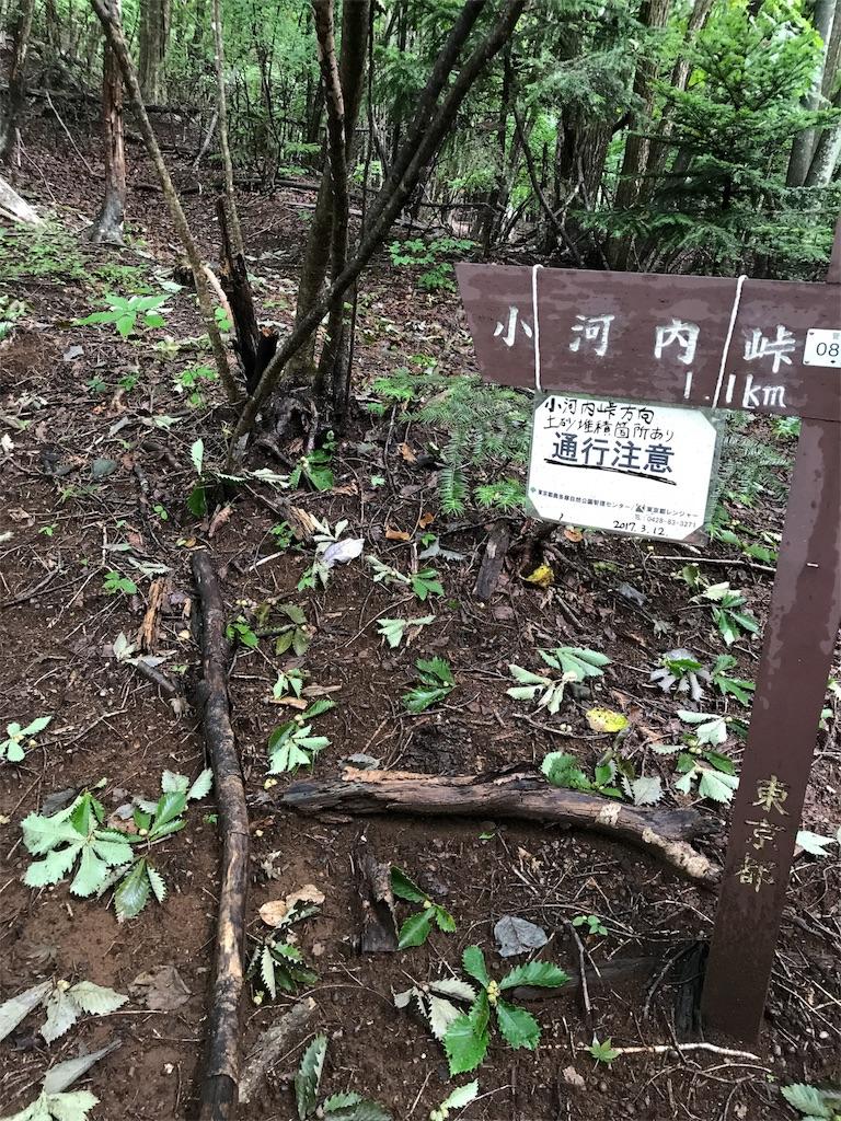 f:id:hatakofuru:20170903200800j:image