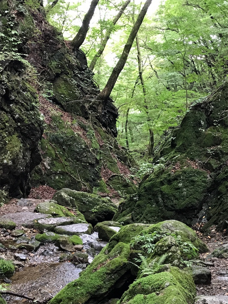f:id:hatakofuru:20170904233414j:image