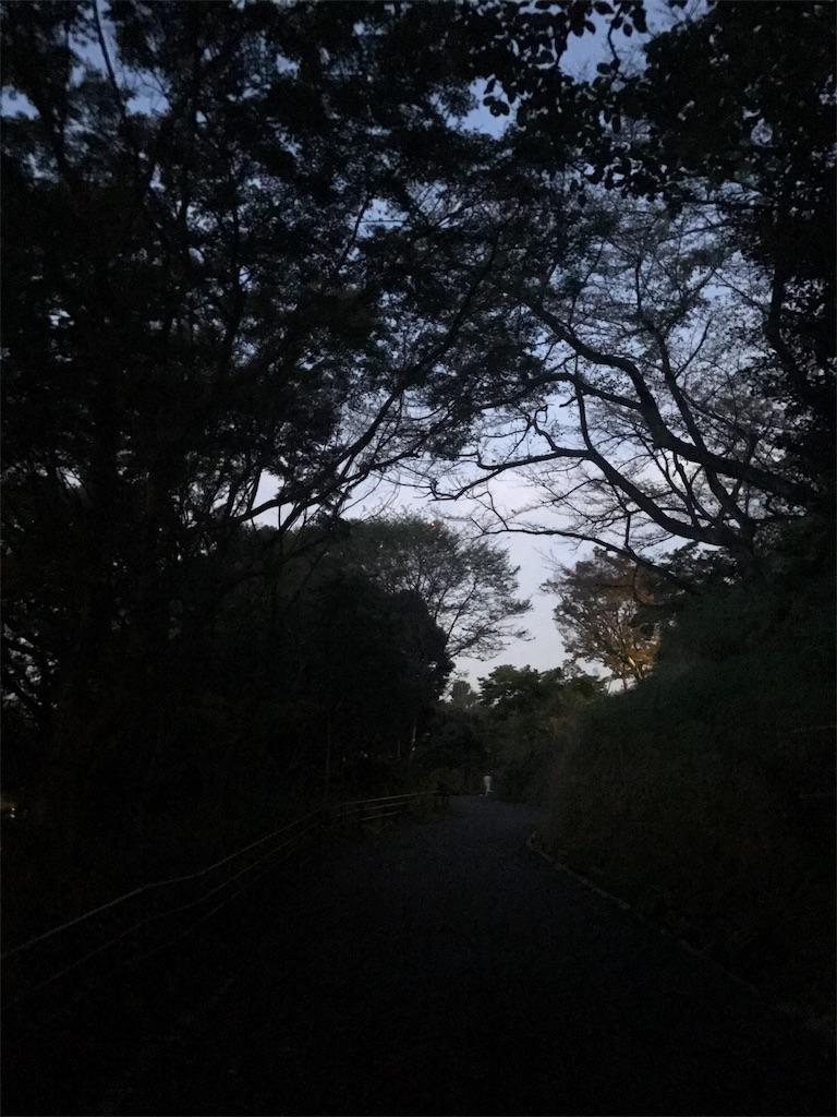 f:id:hatakofuru:20171004180754j:image