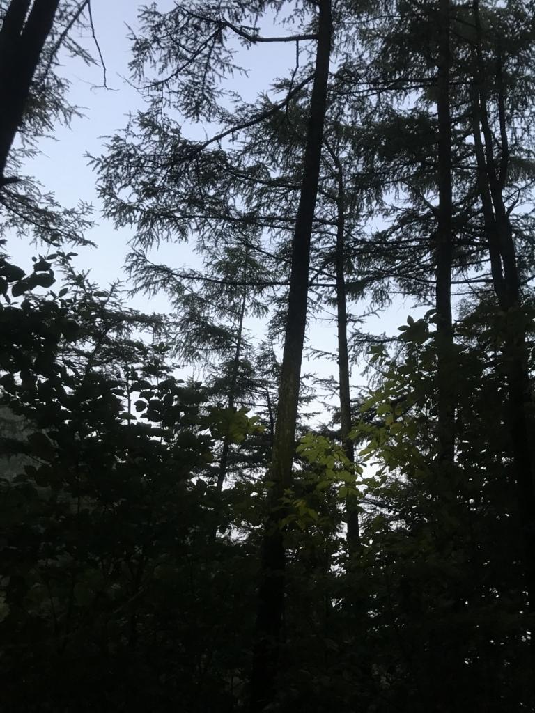 f:id:hatakofuru:20171012054725j:plain