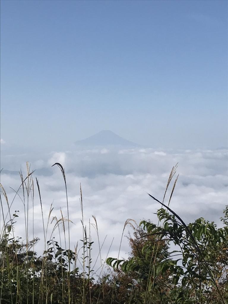 f:id:hatakofuru:20171012055306j:plain
