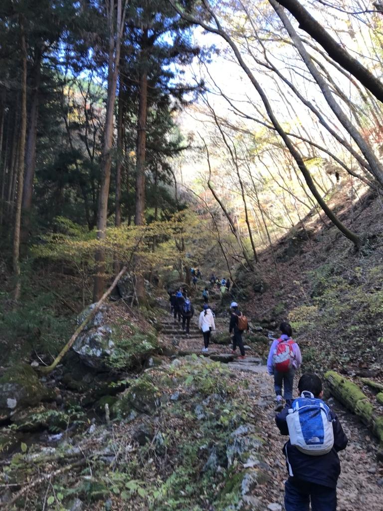 f:id:hatakofuru:20171112193917j:plain