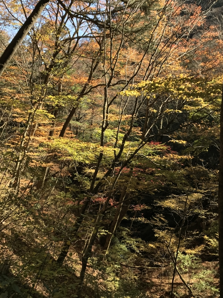 f:id:hatakofuru:20171112194737j:plain