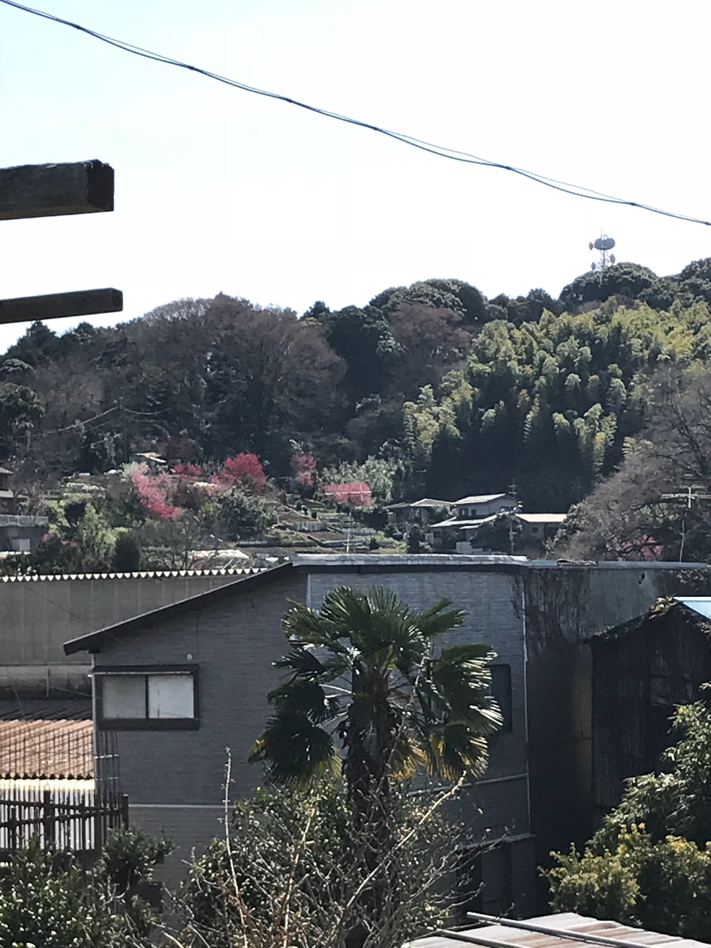 f:id:hatakofuru:20180318201836j:image