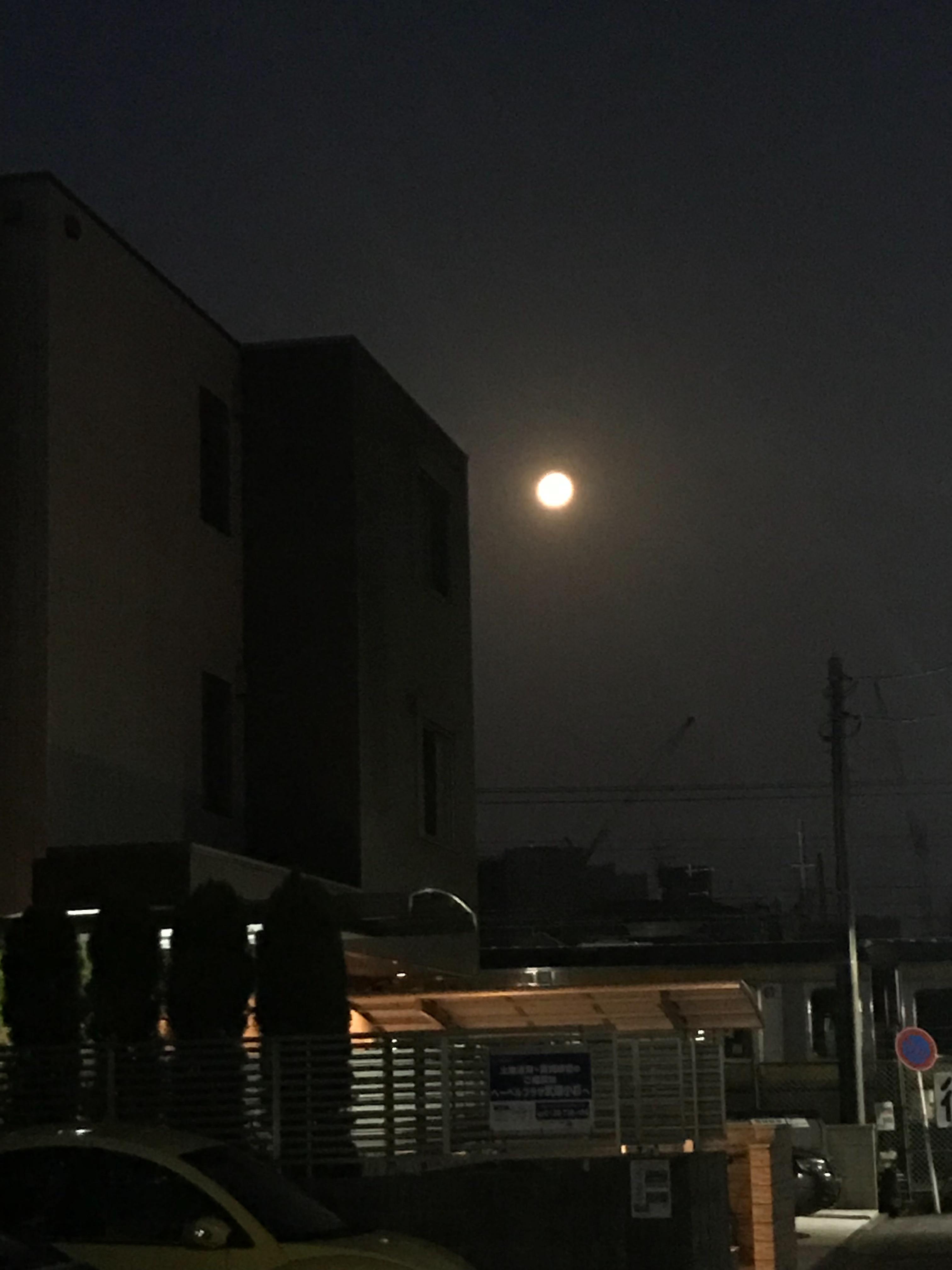 f:id:hatakofuru:20180402201944j:image