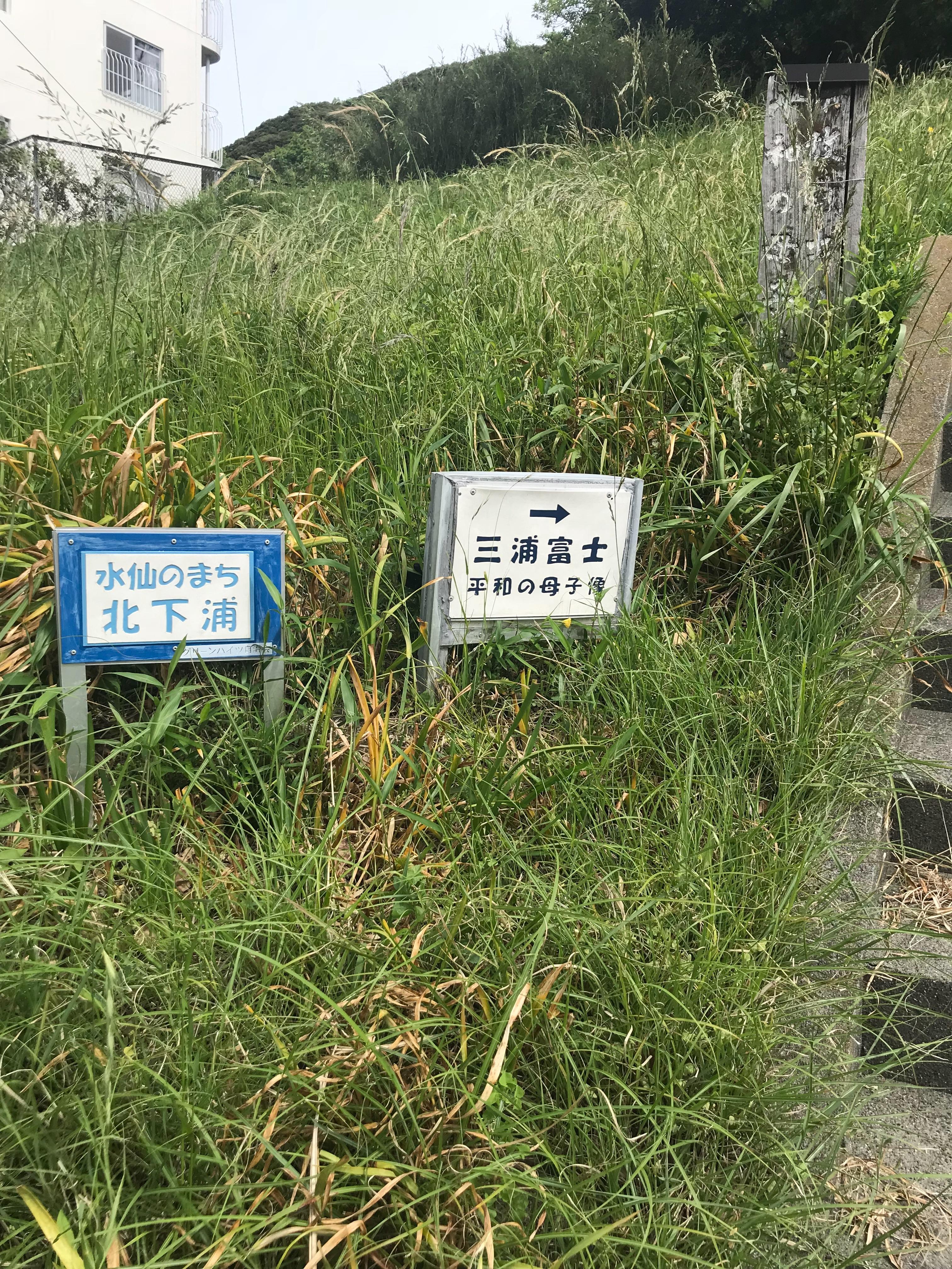 f:id:hatakofuru:20180428002511j:image