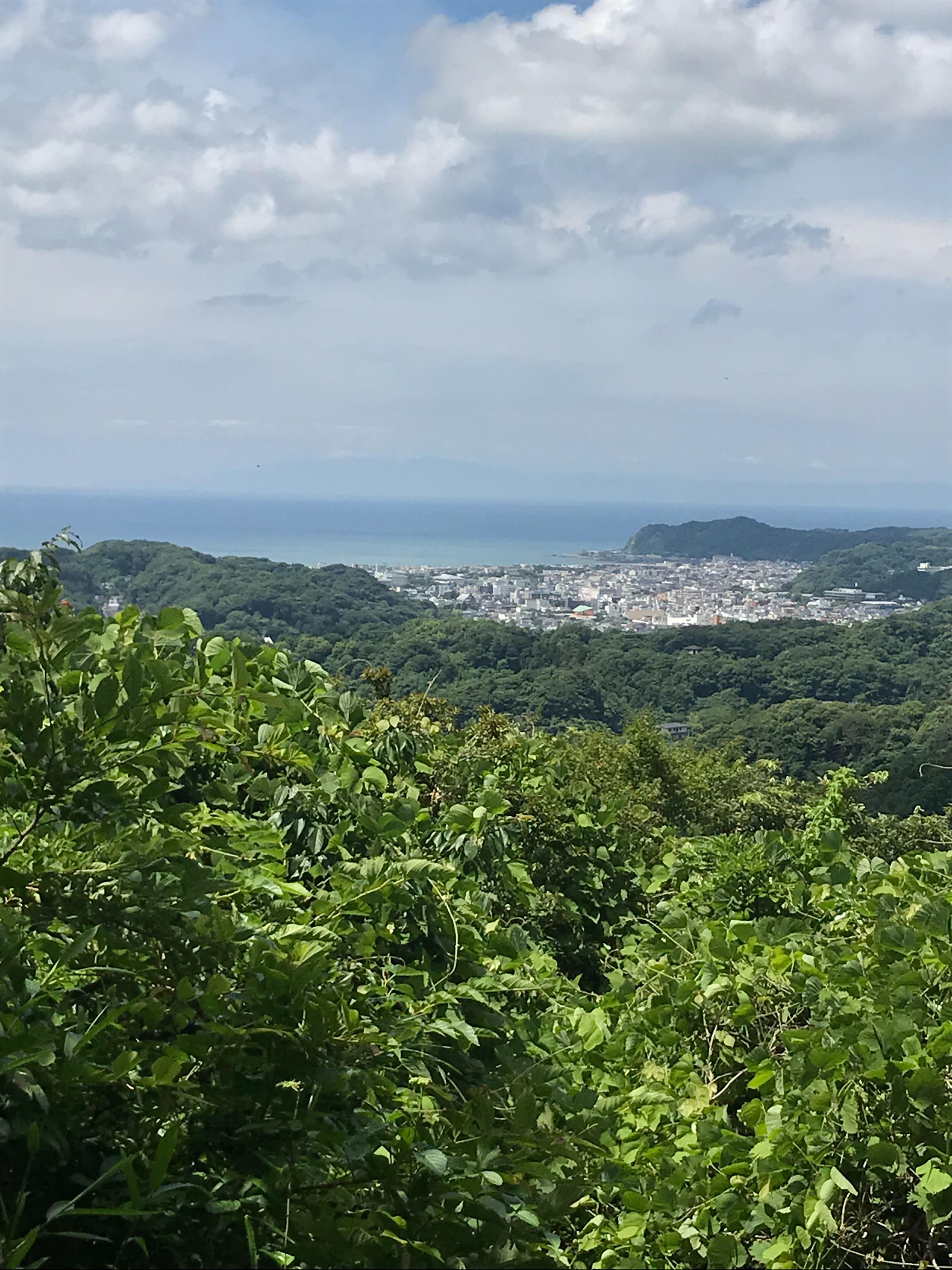 f:id:hatakofuru:20180621115204j:image