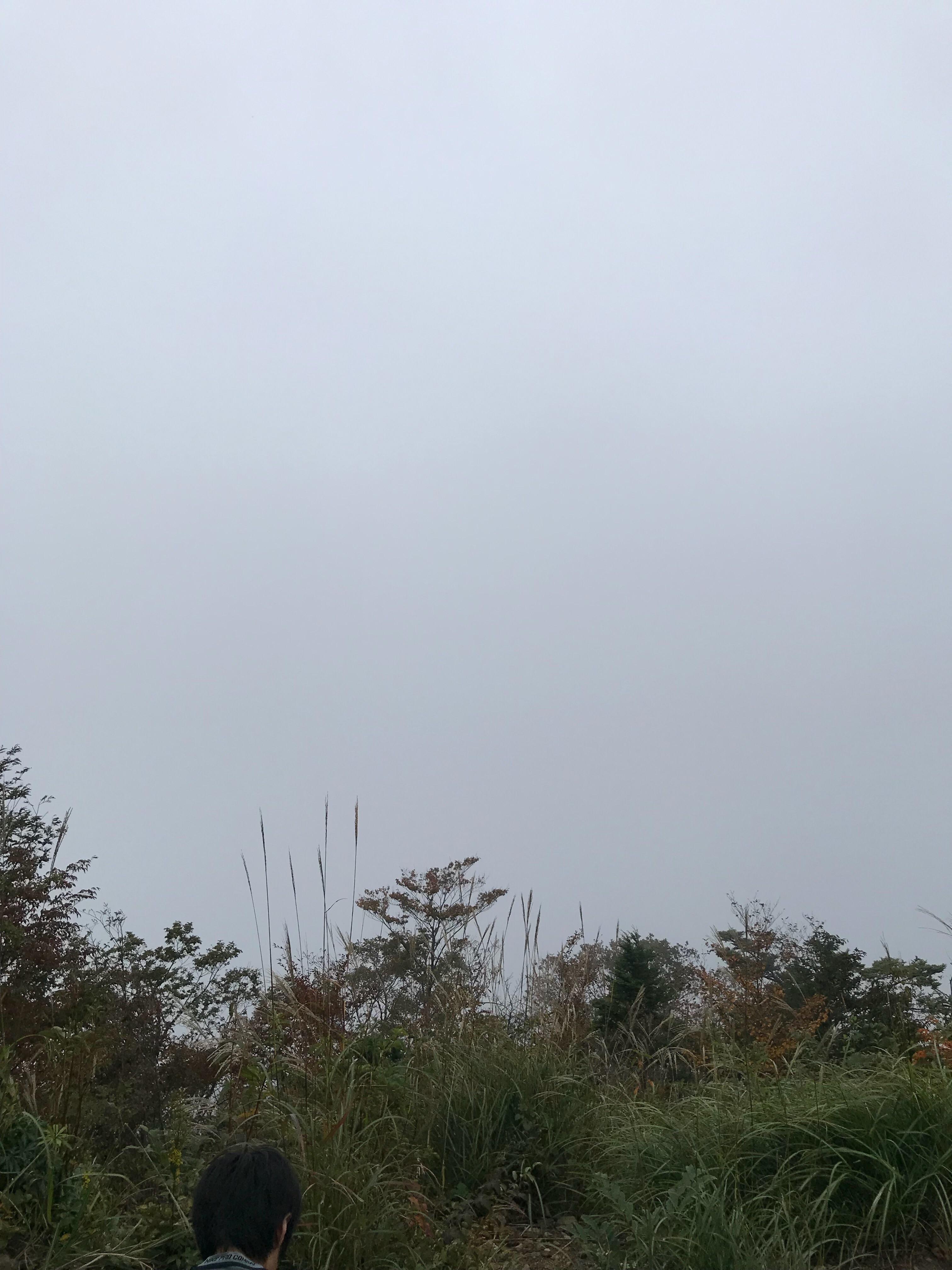 f:id:hatakofuru:20181011182437j:image