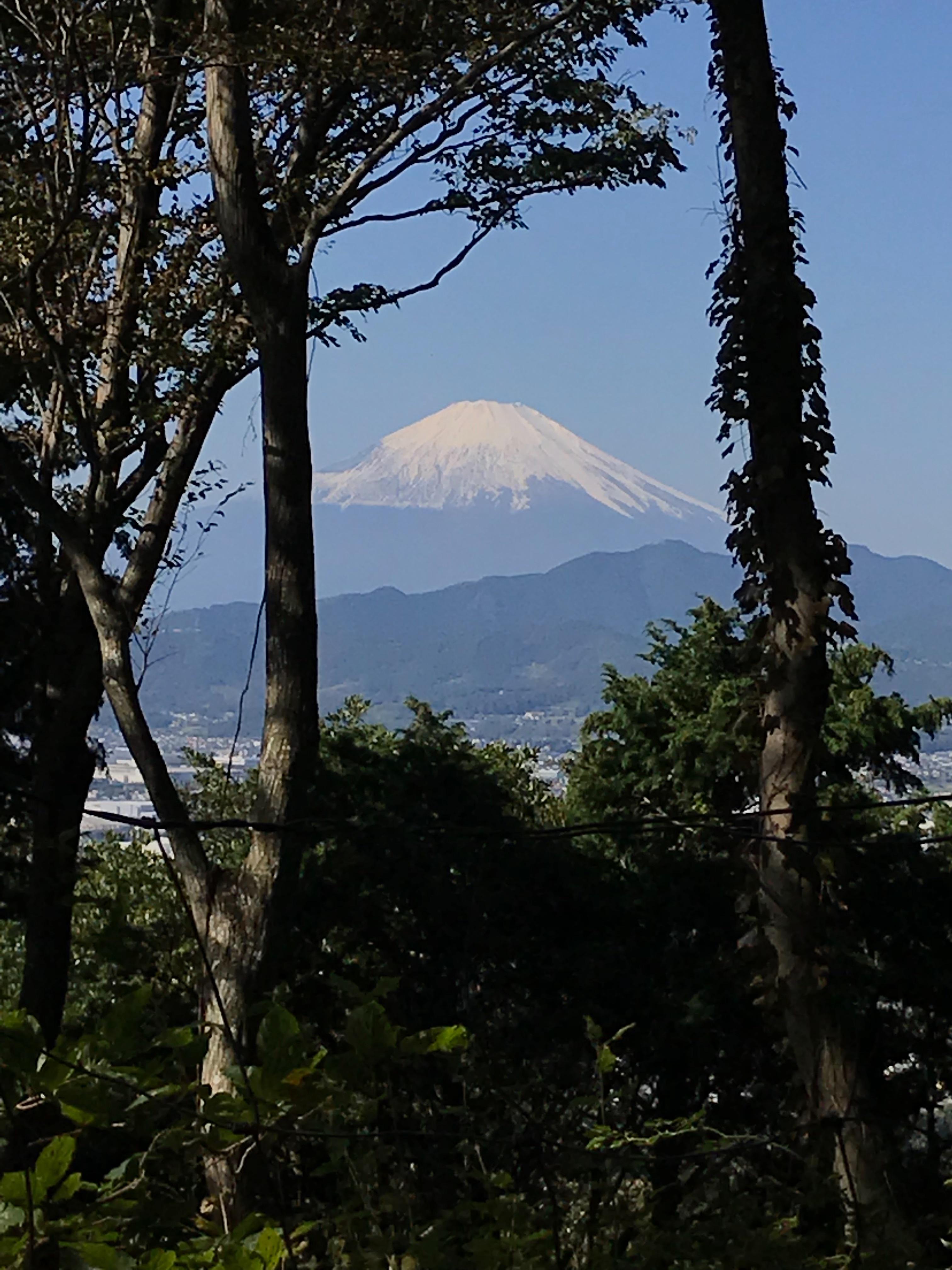 f:id:hatakofuru:20181023123548j:image