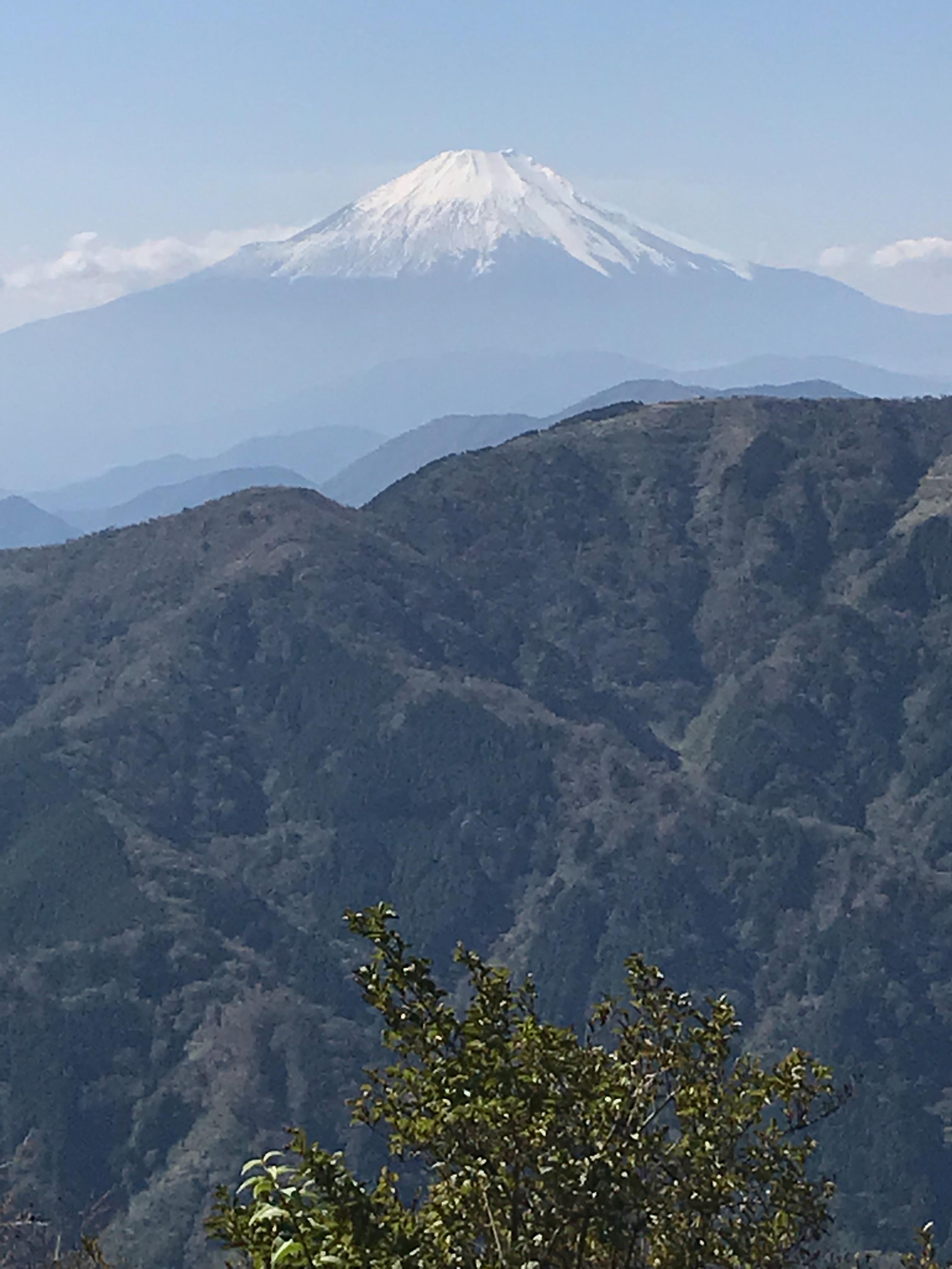 f:id:hatakofuru:20181023175624j:image