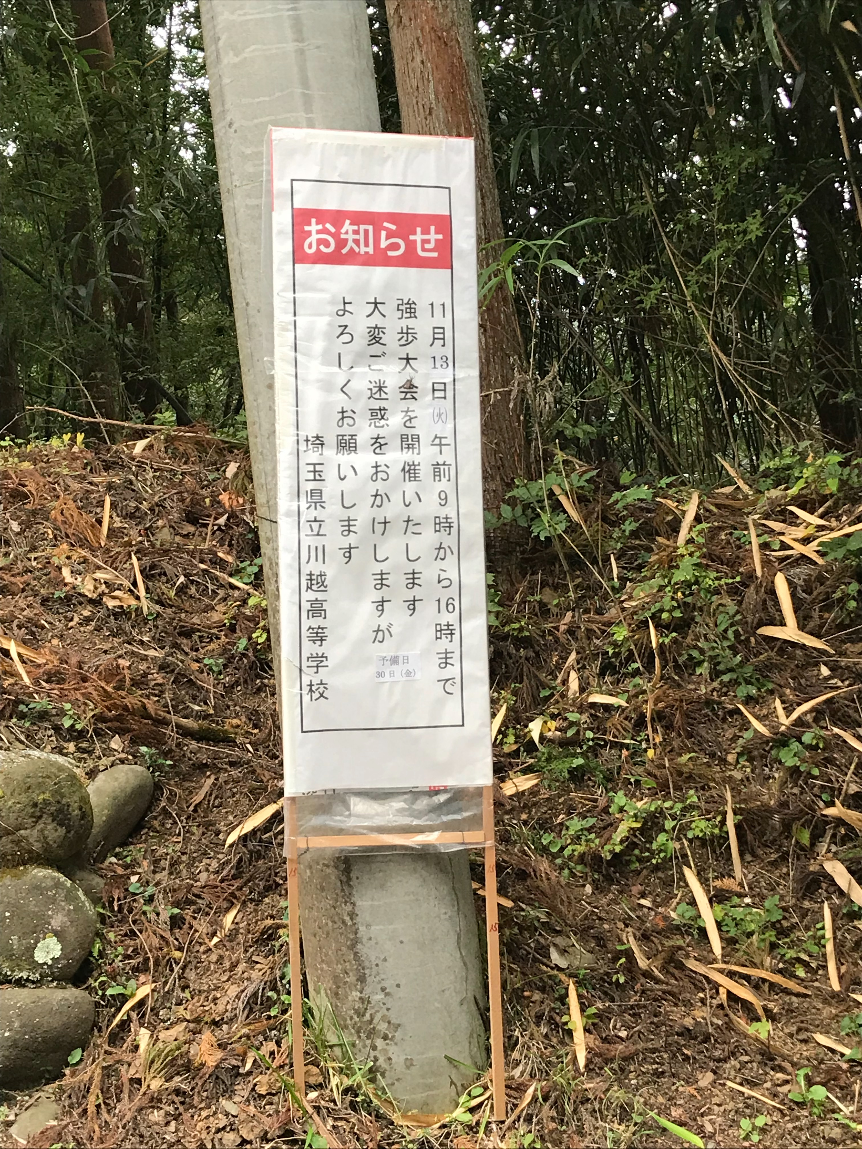 f:id:hatakofuru:20181105123827j:image