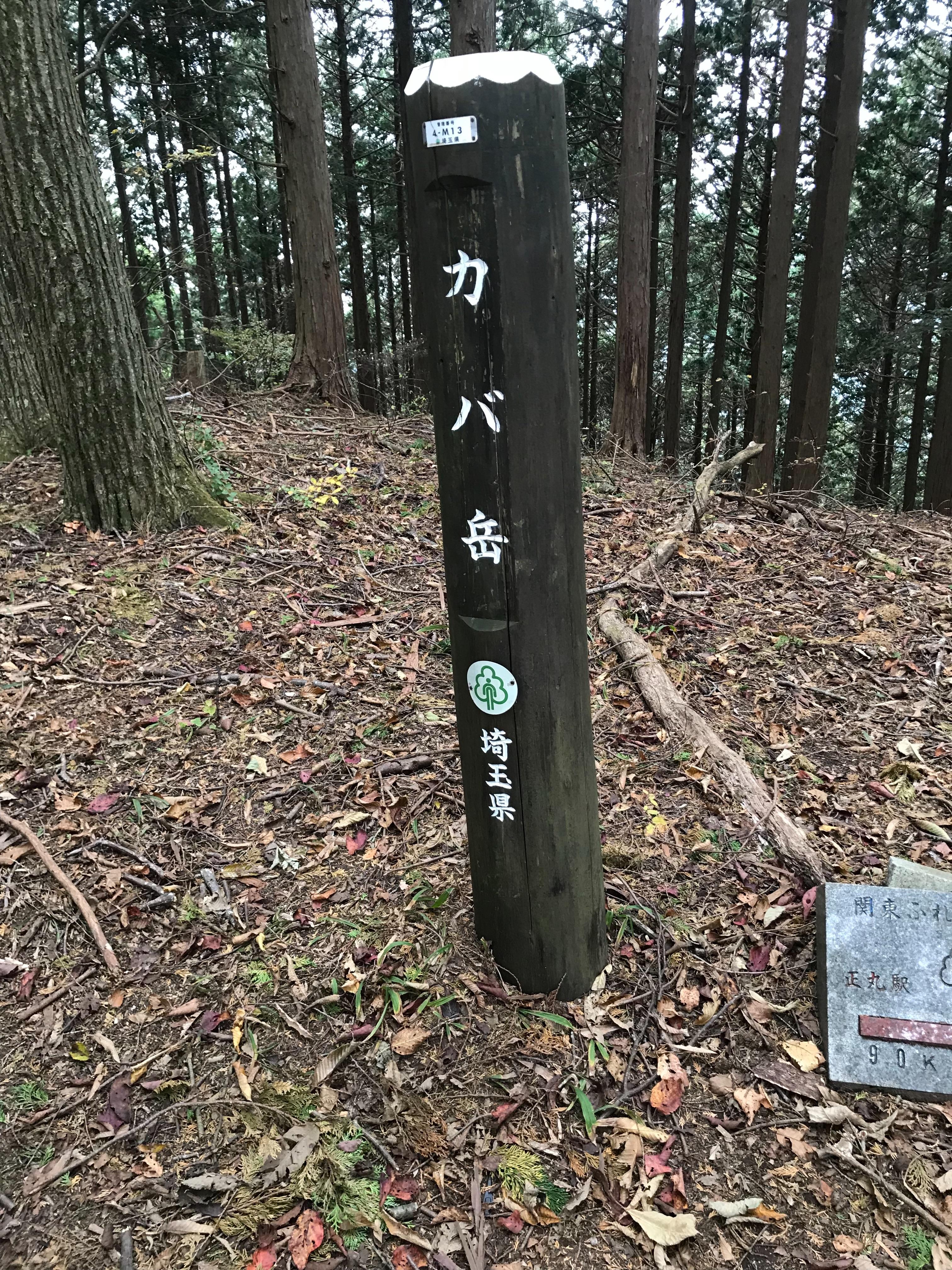f:id:hatakofuru:20181105210705j:image