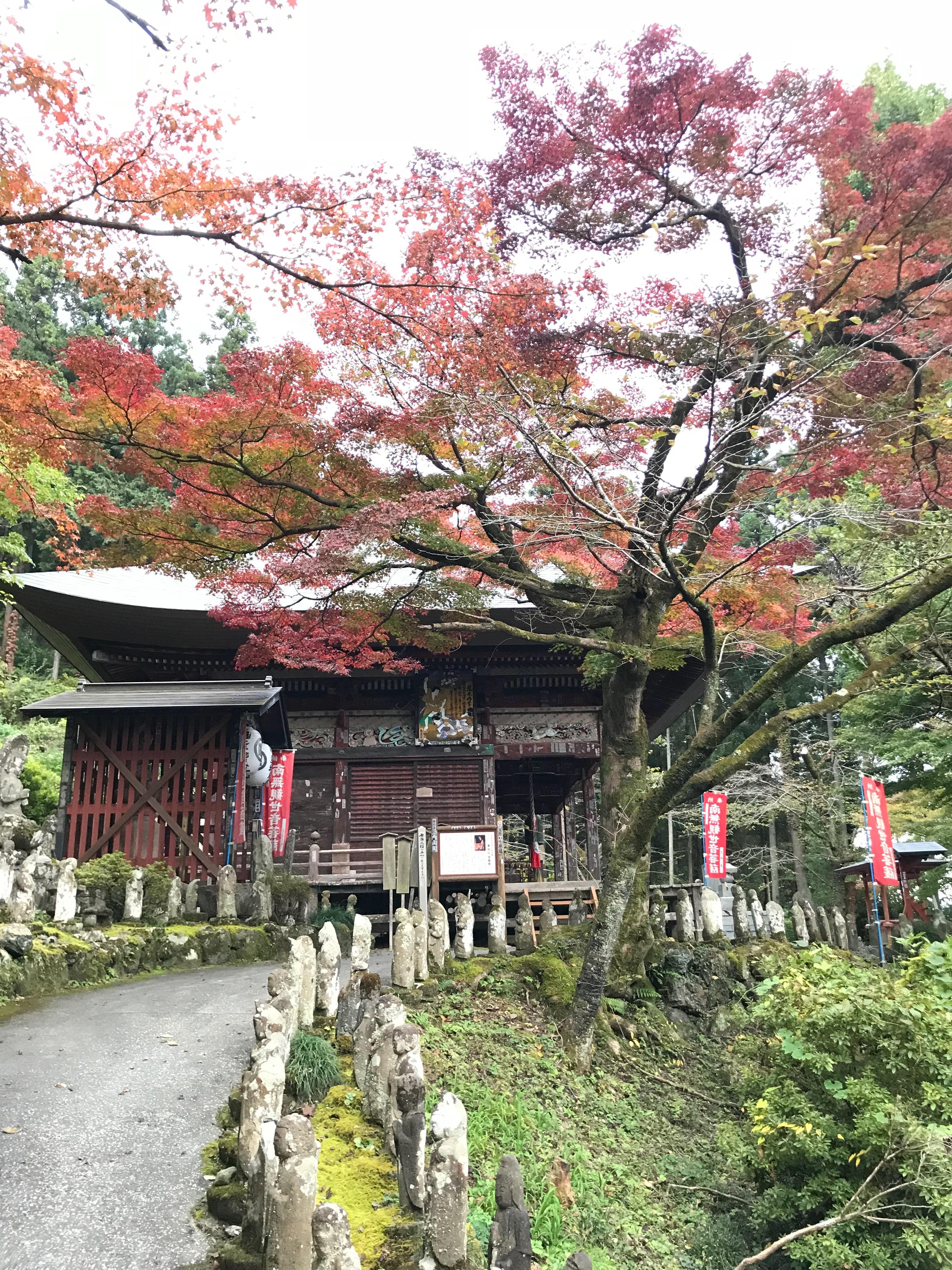 f:id:hatakofuru:20181105221342j:image