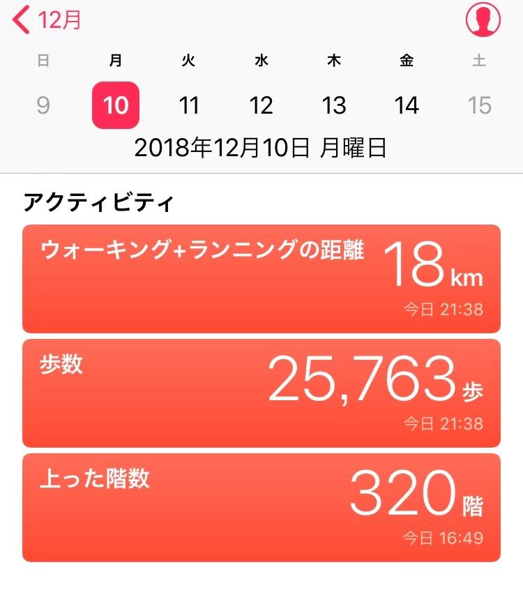 f:id:hatakofuru:20181211124516j:image