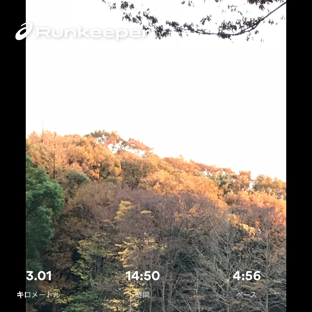 f:id:hatakofuru:20181217074754p:image