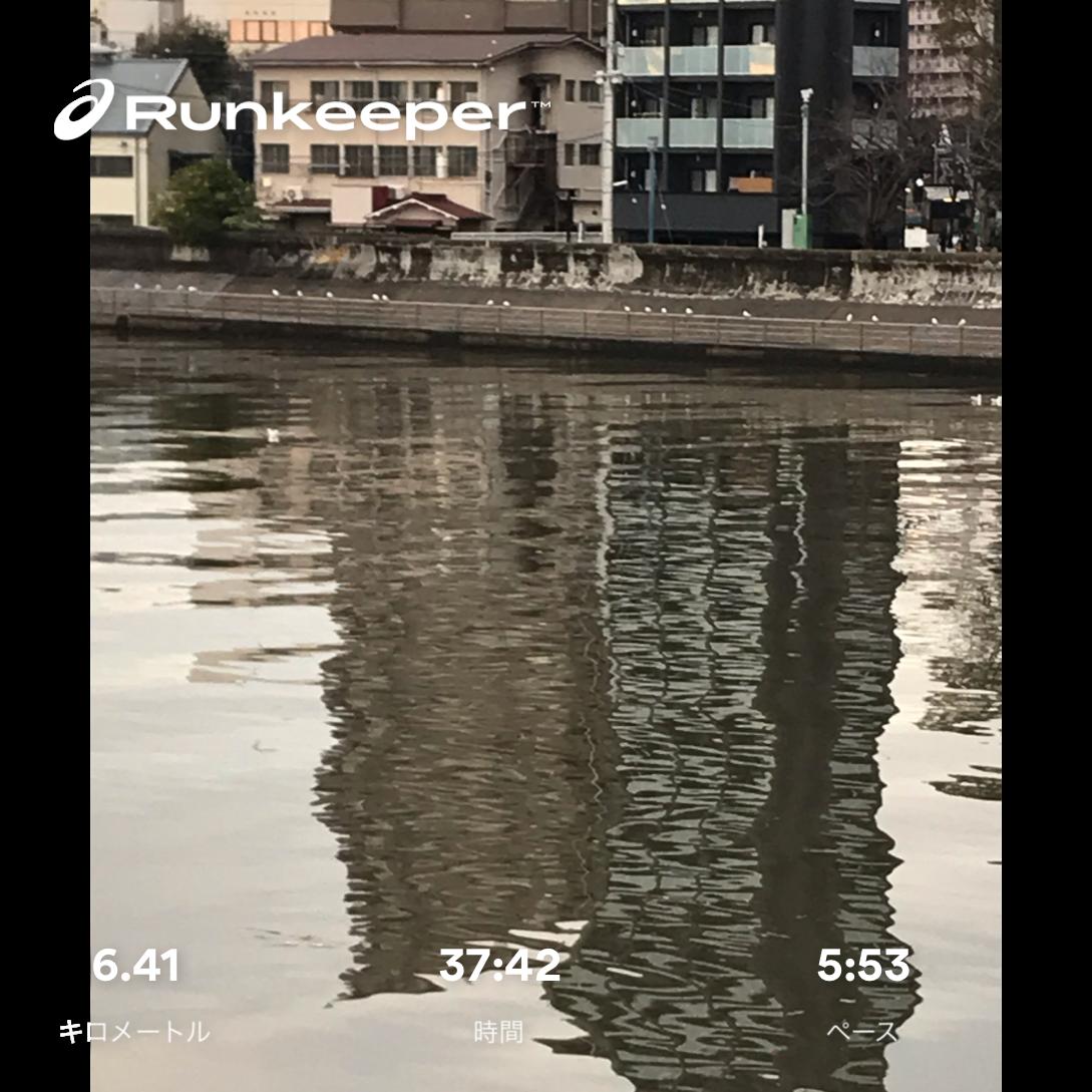 f:id:hatakofuru:20181217152412p:image