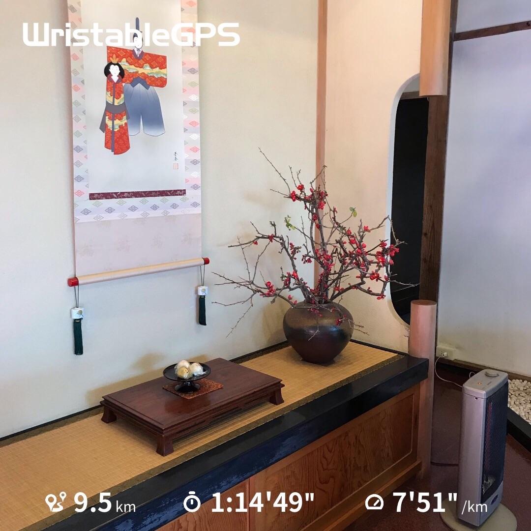 f:id:hatakofuru:20190311162426j:image