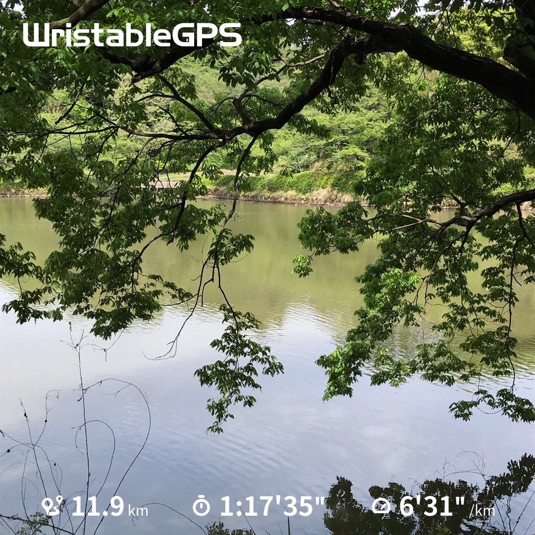 f:id:hatakofuru:20190506095103j:image