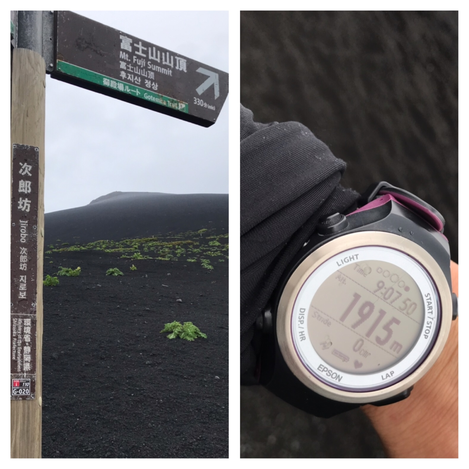 f:id:hatakofuru:20190721201018j:image