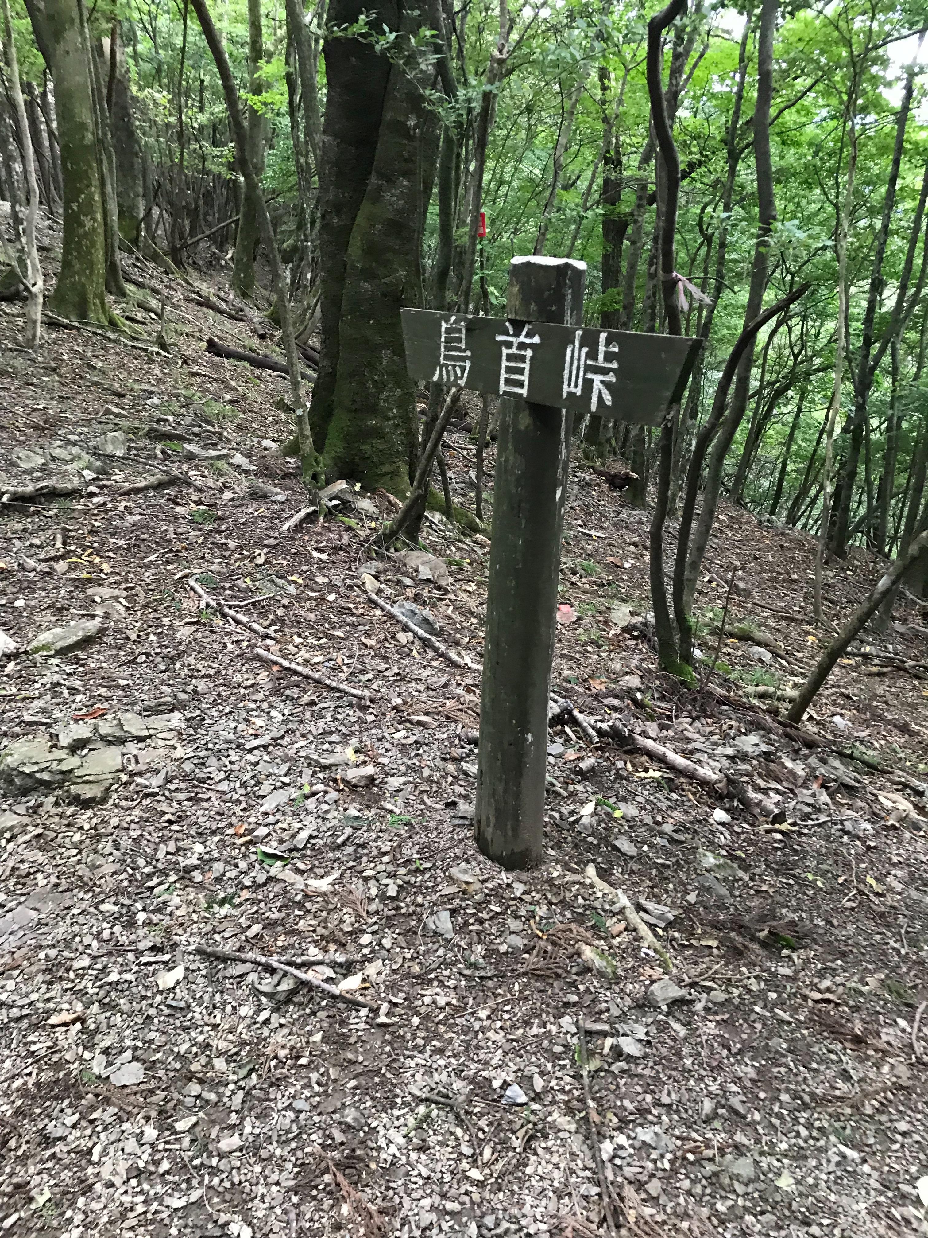 f:id:hatakofuru:20190921084953j:image